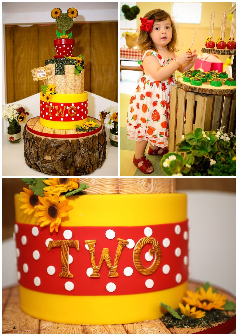 Super Isabelas 2Nd Birthday Cake Miami Custom Birthday Cakes Funny Birthday Cards Online Hendilapandamsfinfo